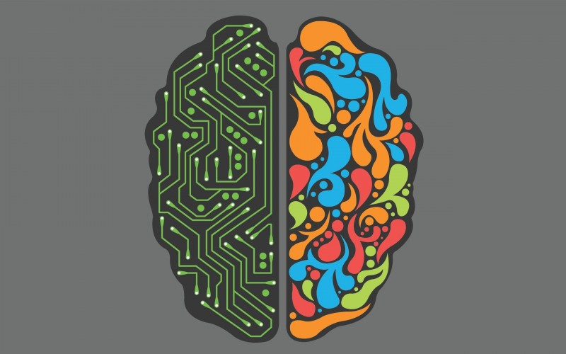 left-brain-right-brain-art-hd-wallpaper